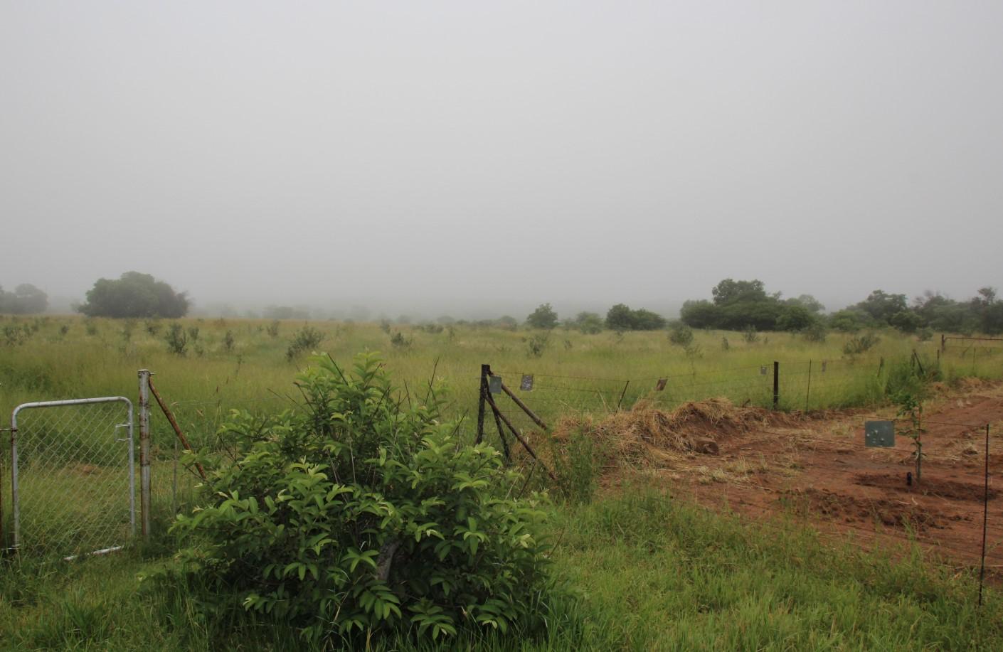 Farm in Kromdraai, 55km from Bela-Bela