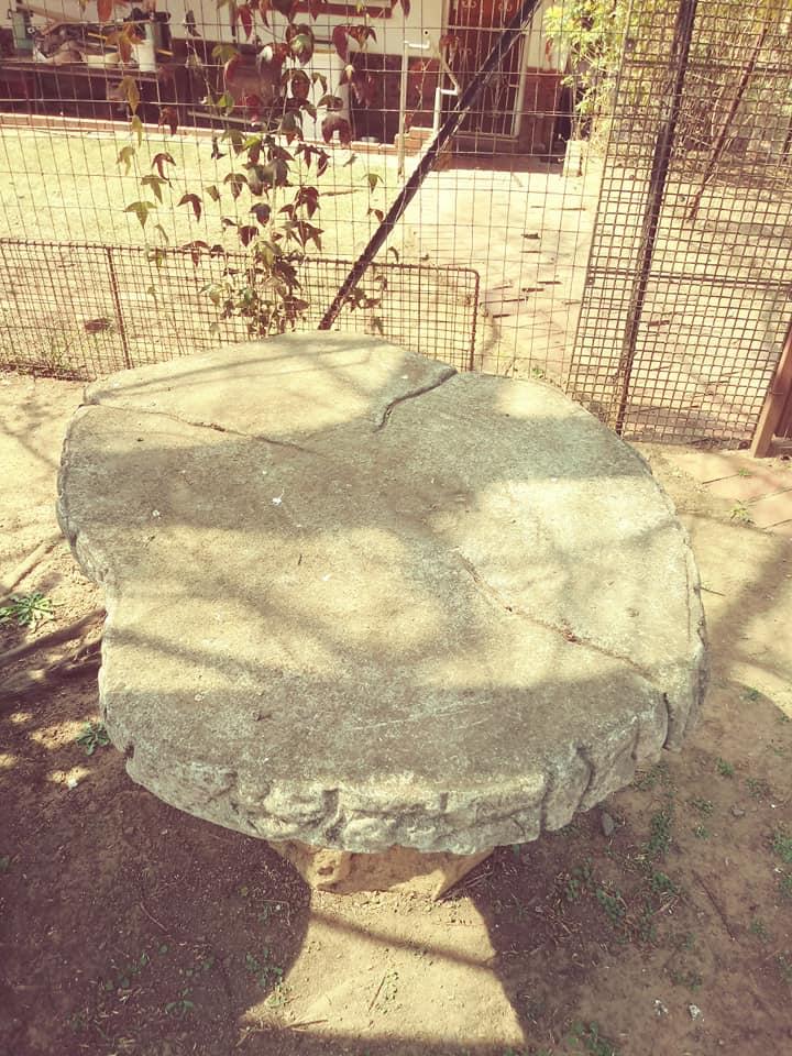 Tree shaped garden bench