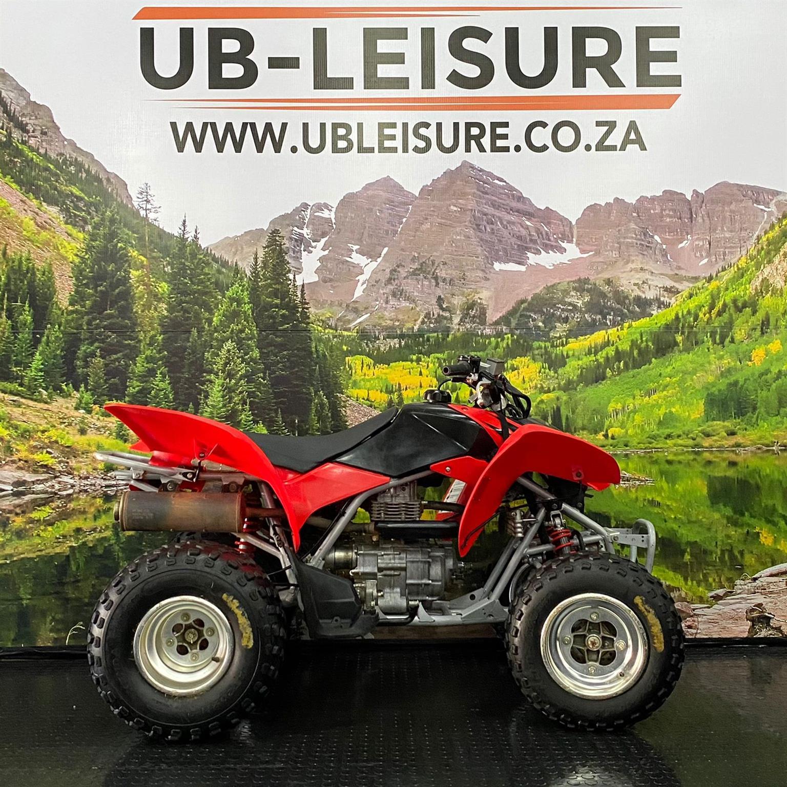 2006 HONDA TRX 250 | UB LEISURE