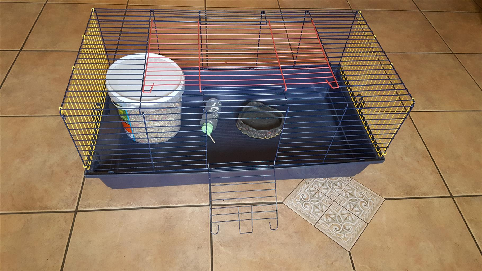 Guinea Pig Accesories.