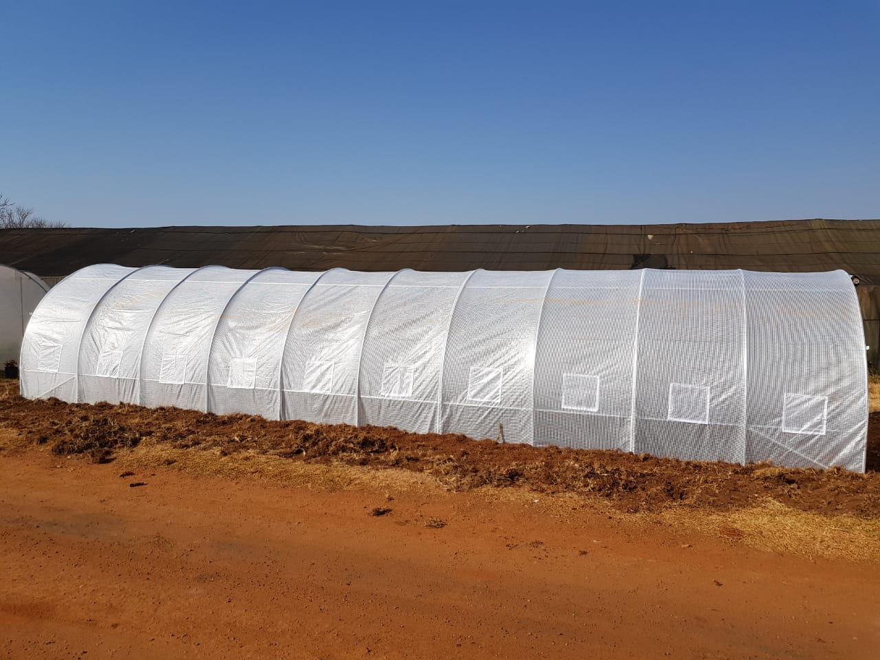 Vegetable Green Houses for Sale