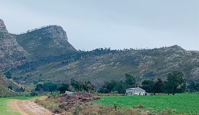 Farm For Sale in Langkloof