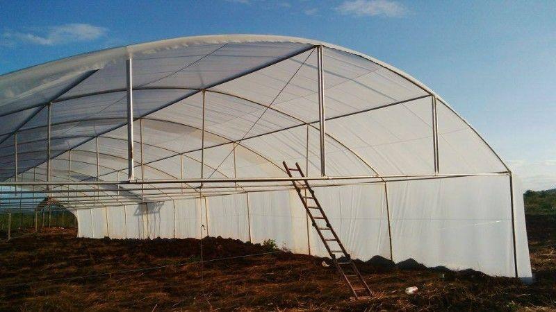 Greenhouse Zeerust   , Vegetable Tunnels