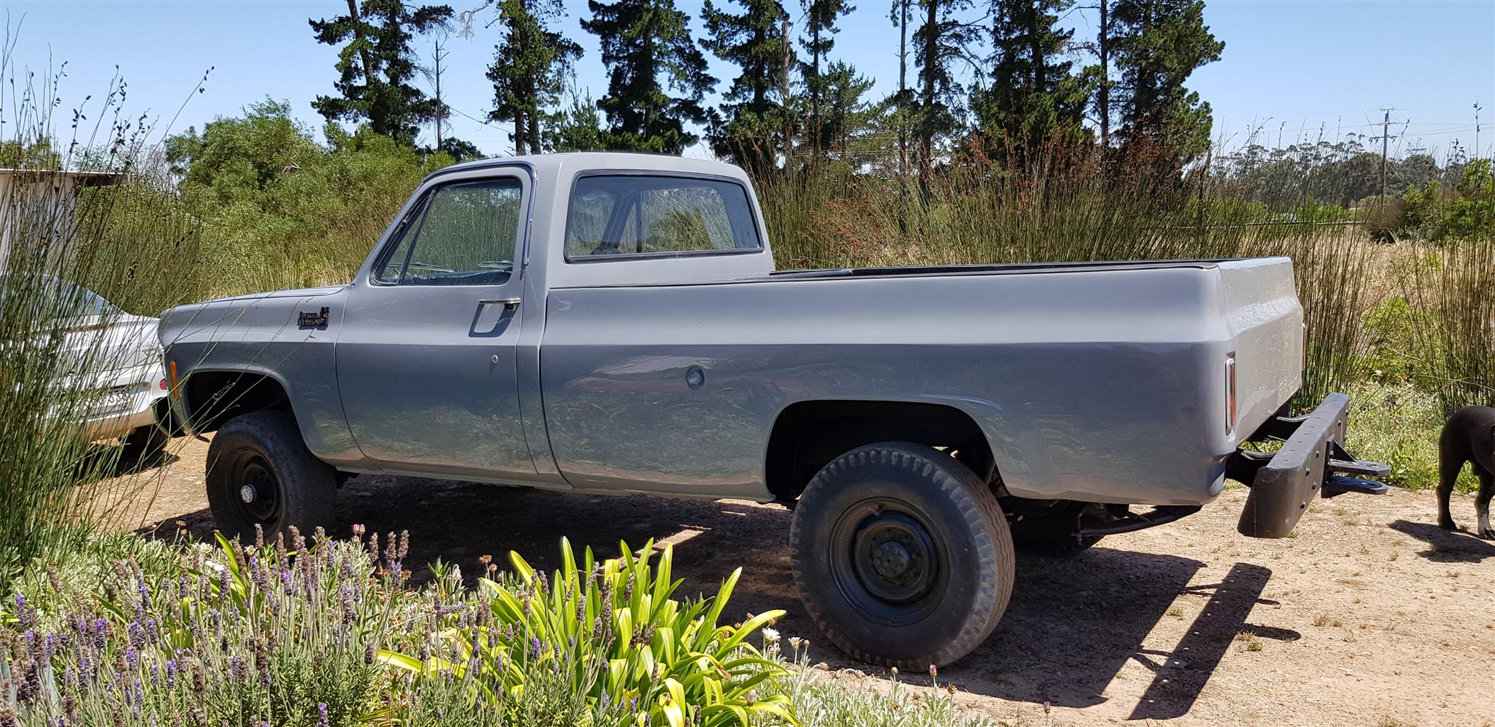 Classic Cars Chevrolet