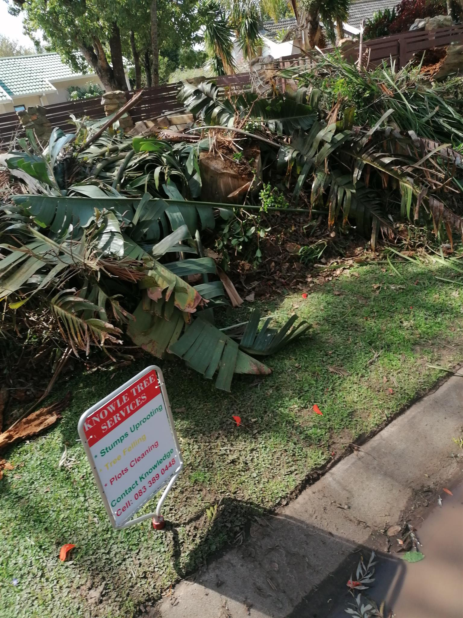 Stumps uprooting in Port Alfred/Colchester