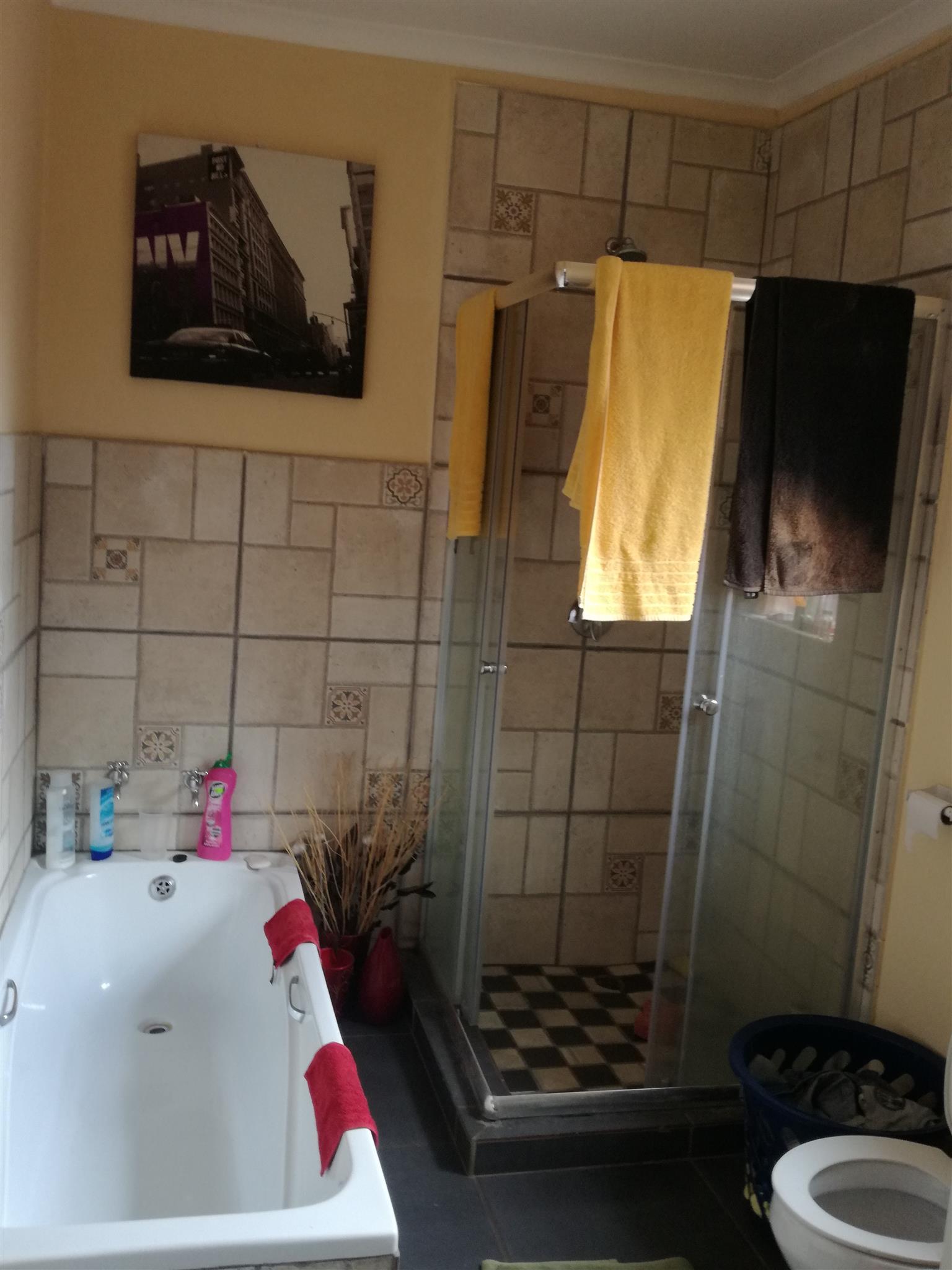 1 bedroom garden flat for rental