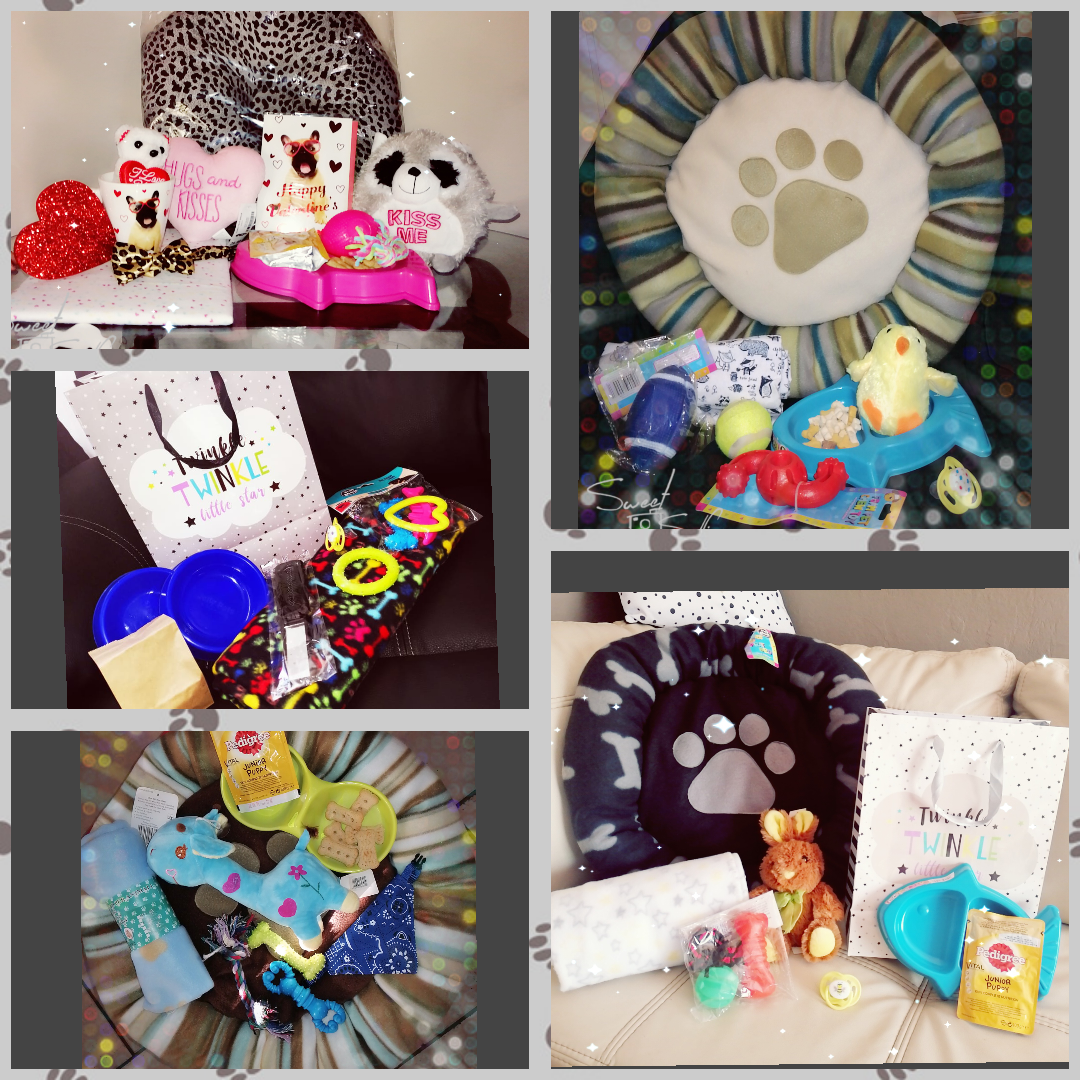 Lovely Thoroughbred puppies FREE HAMPER