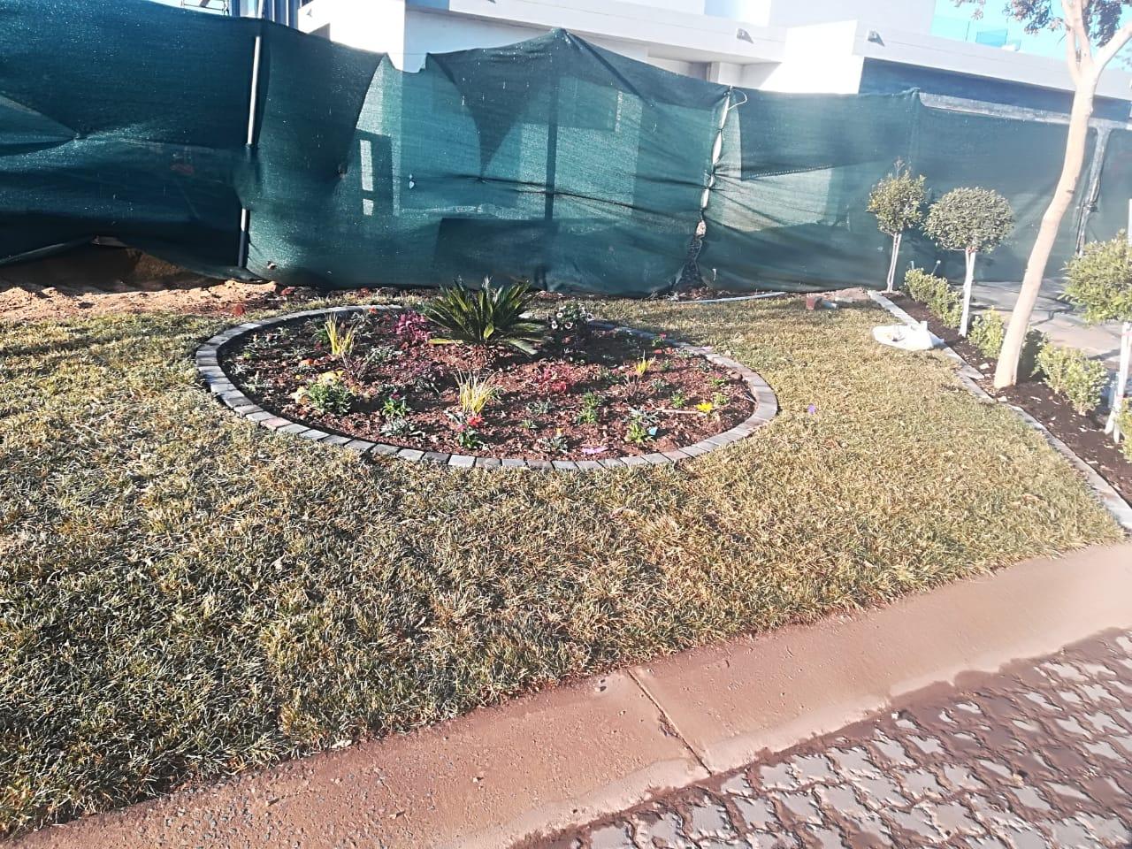 Benjamin instant lawn