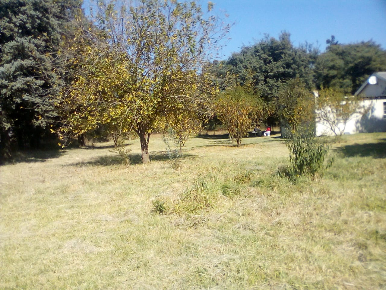 Delmas/Sundra 2 hector plot for sale