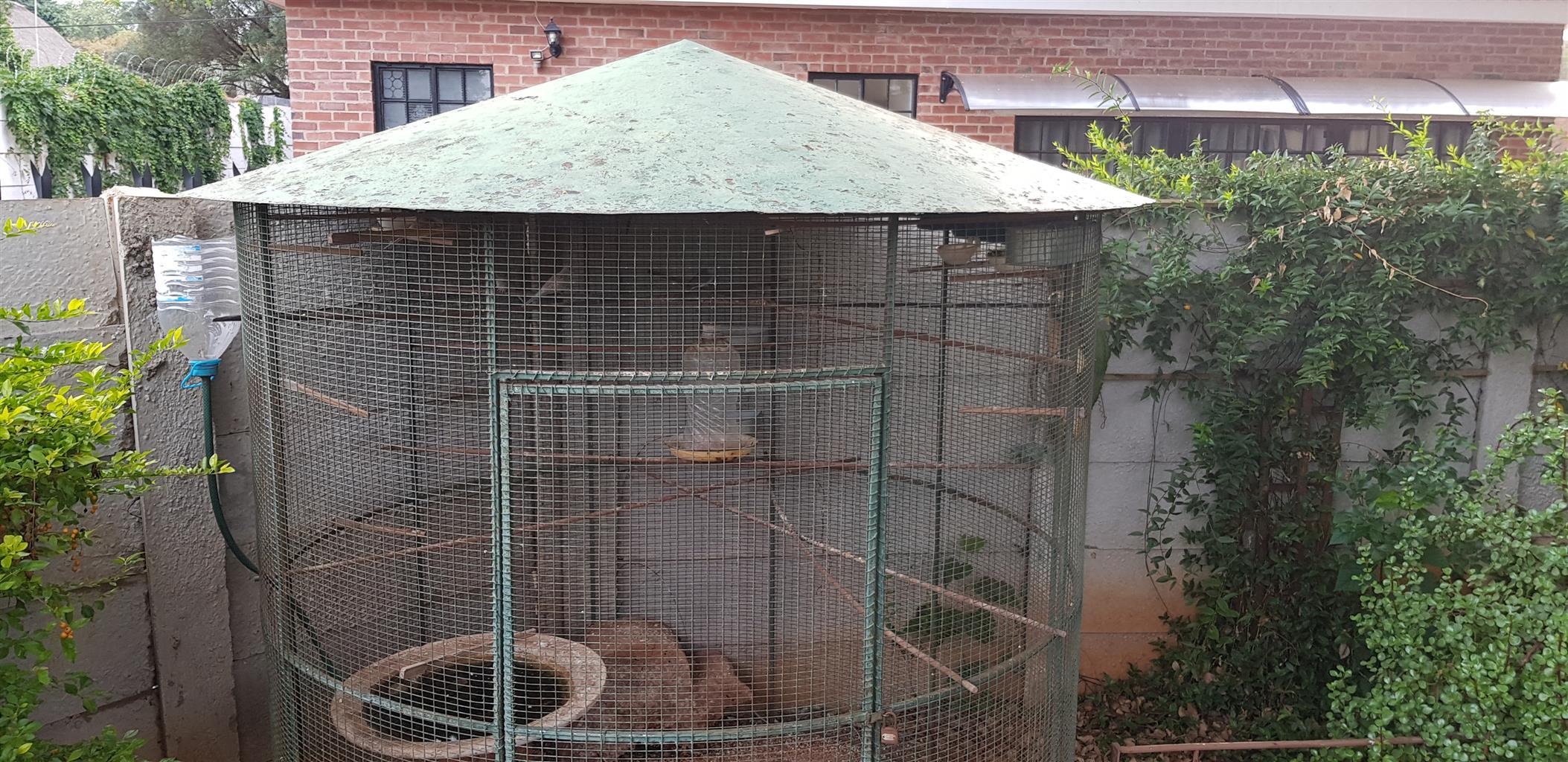 Bird Cage Round
