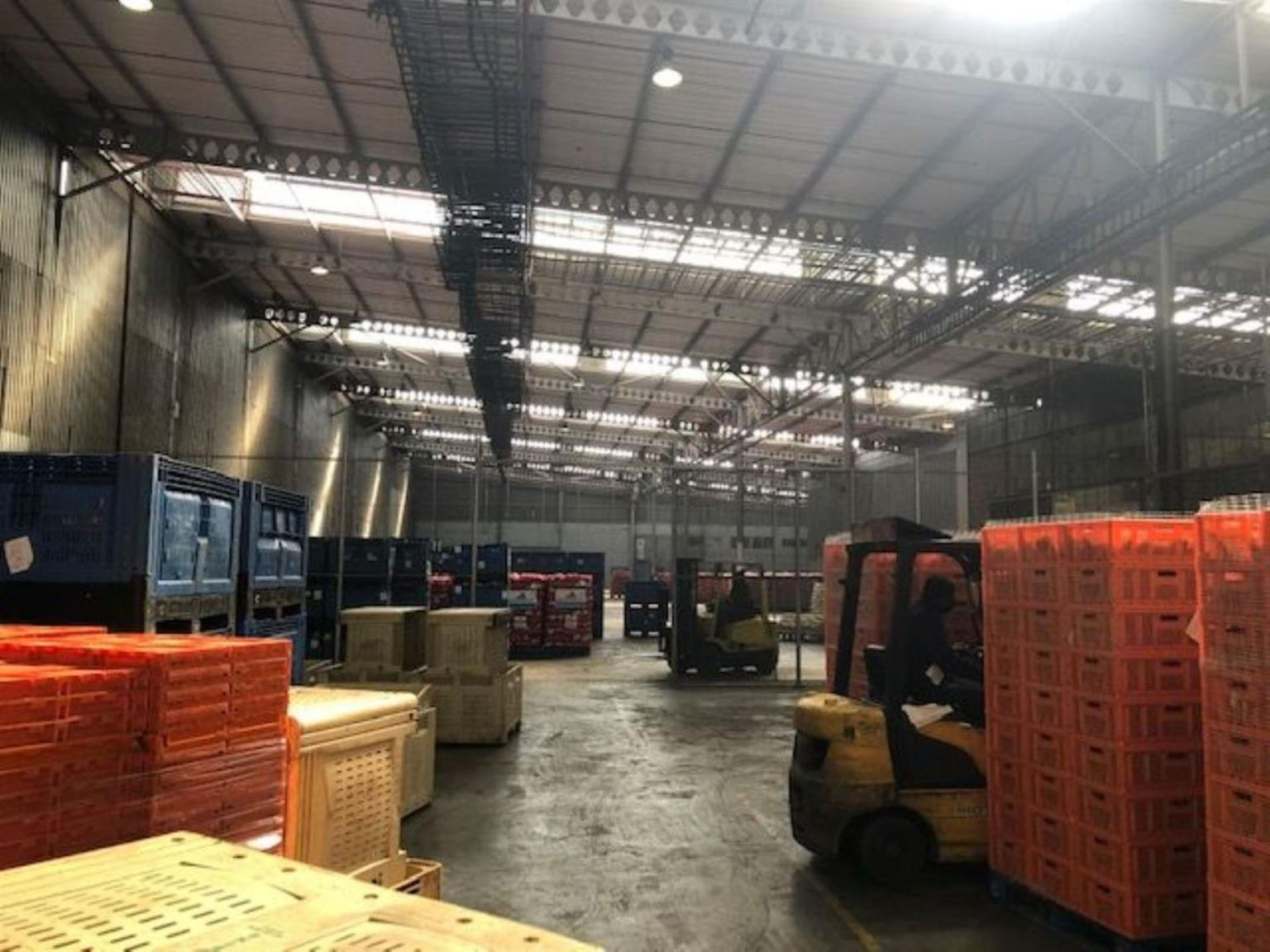 Industrial Rental Monthly in ALBERTON NORTH