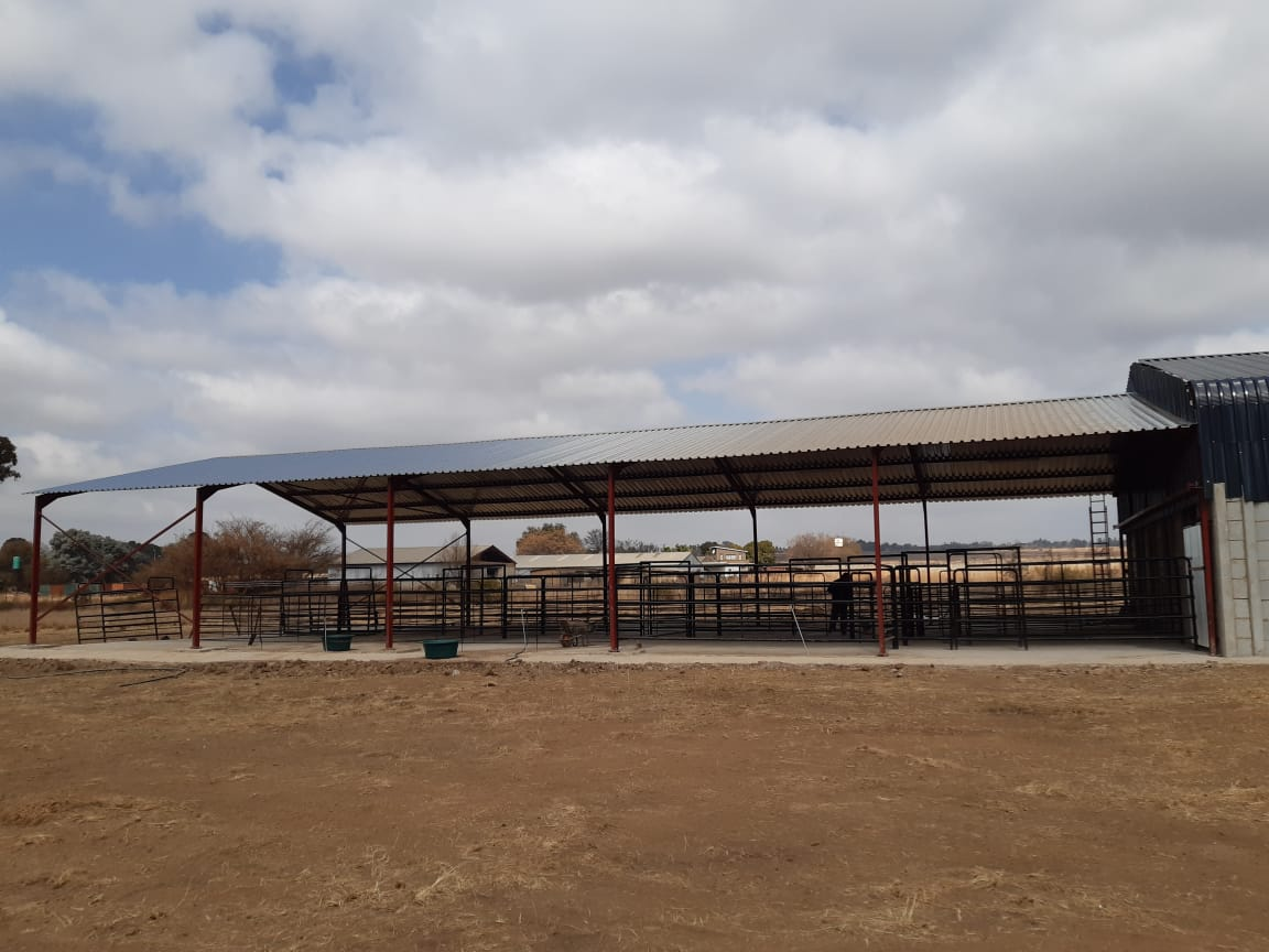 New Steel Structures