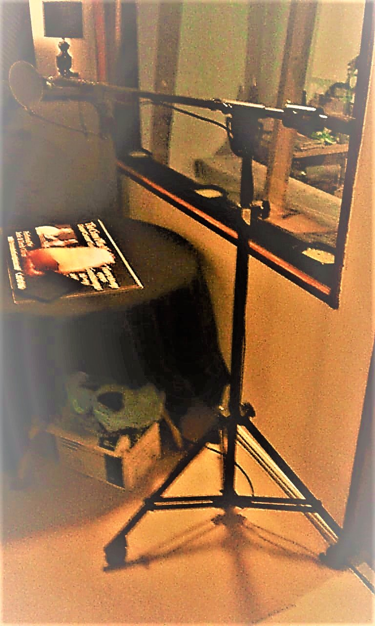 Heavy Duty Studio Boom Stand with Pop Shield.