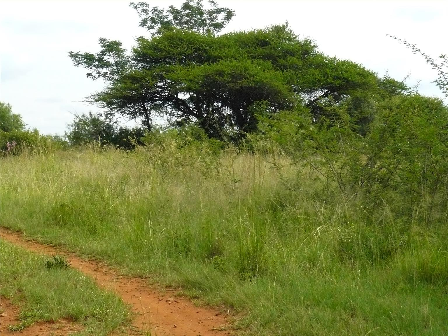 Available 8.5 ha vacant land in Leeuwfontein, Pretoria