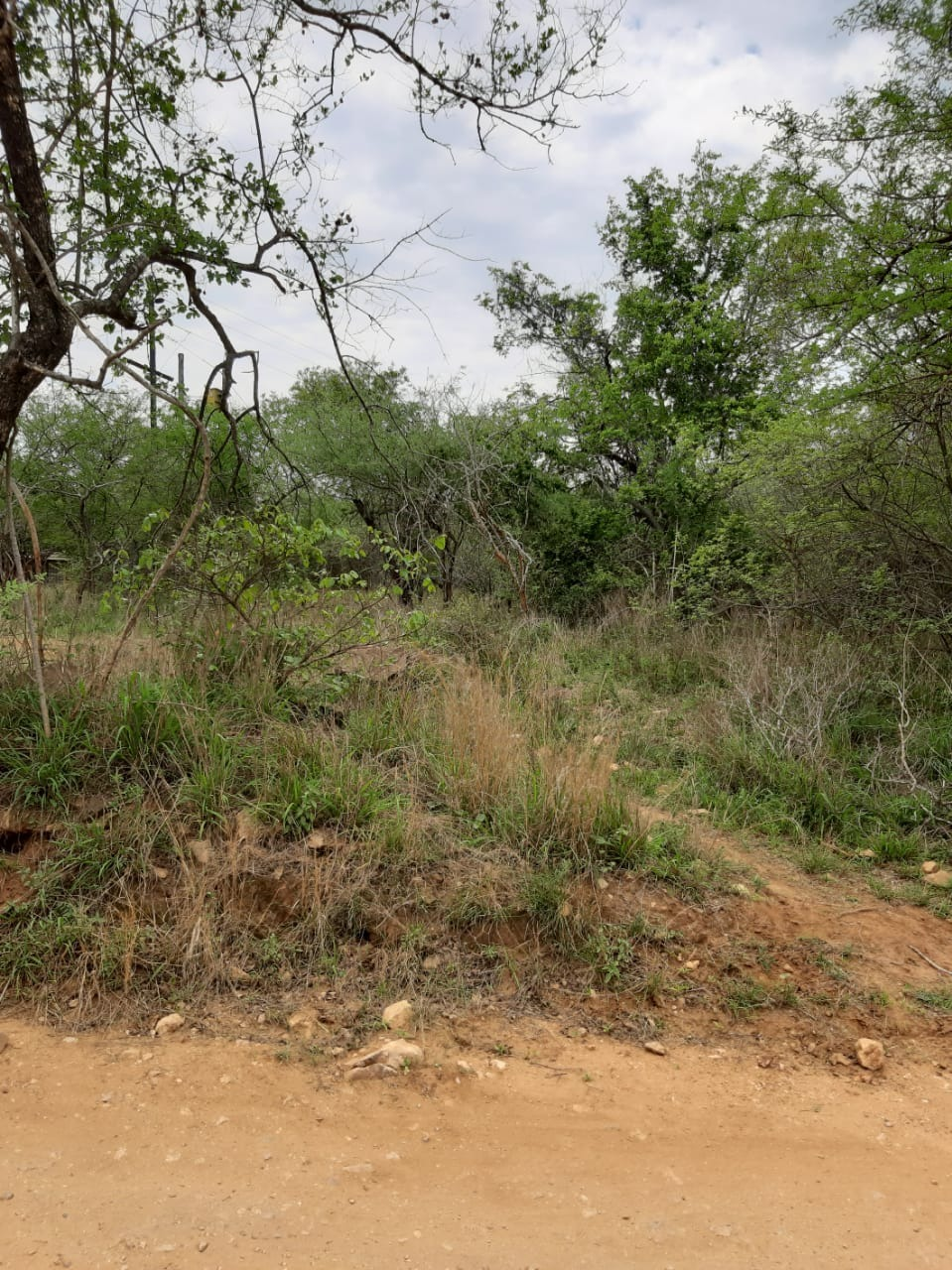Vacant Land Residential For Sale in Marloth Park