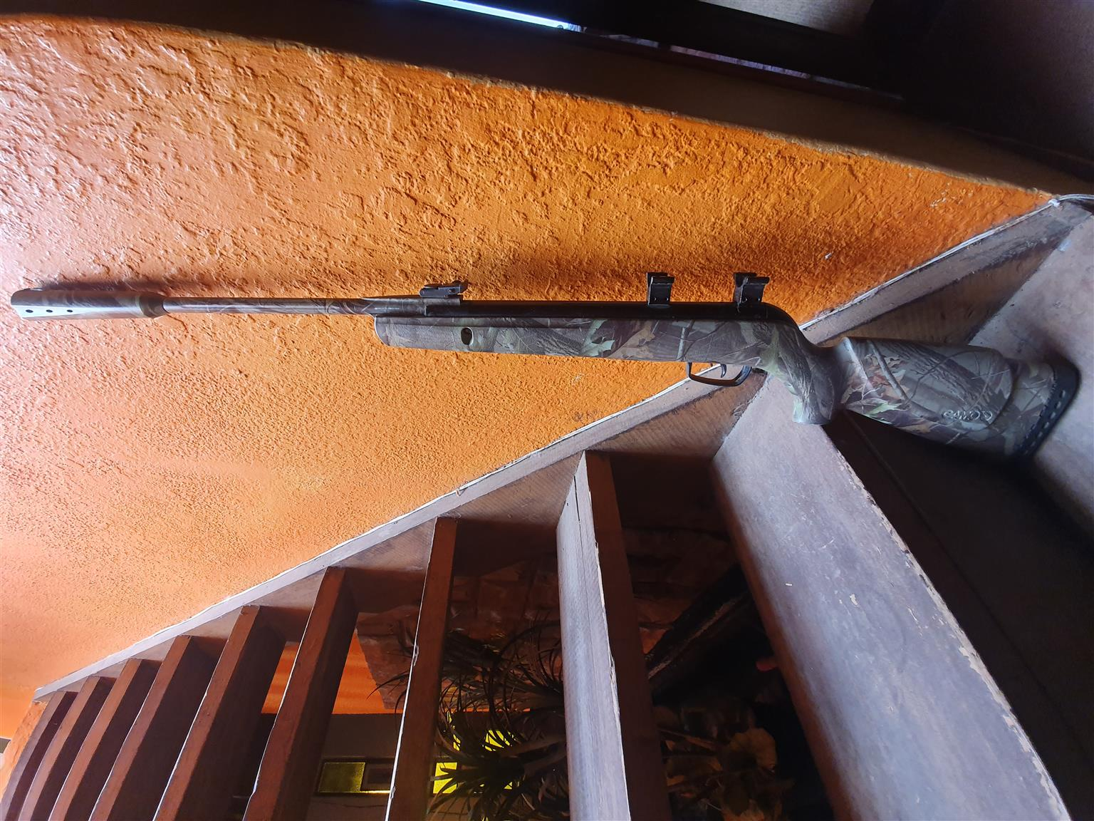 Gamo air gun