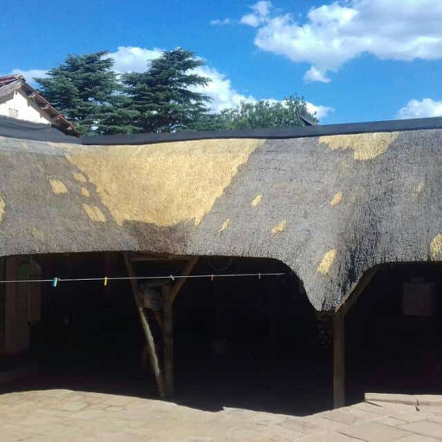 Elephant Thatching Construction