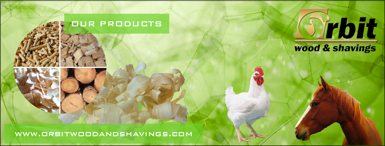 Pine Wood Shavings for Chickens and Horses