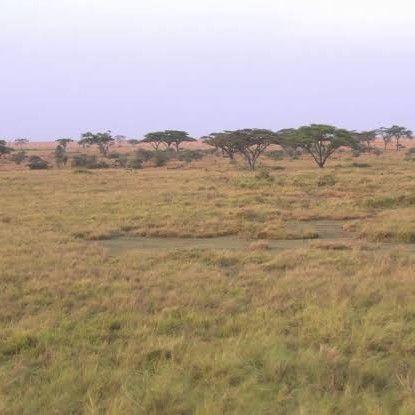 Farm lands for sale