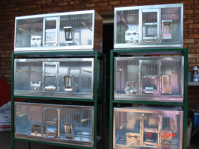 BIRD FEEDERS- SWIVEL FEEDERS- DOG AND CHICKEN FEEDERS,  SPECIALISED FEEDERS FOR EVERY NEED