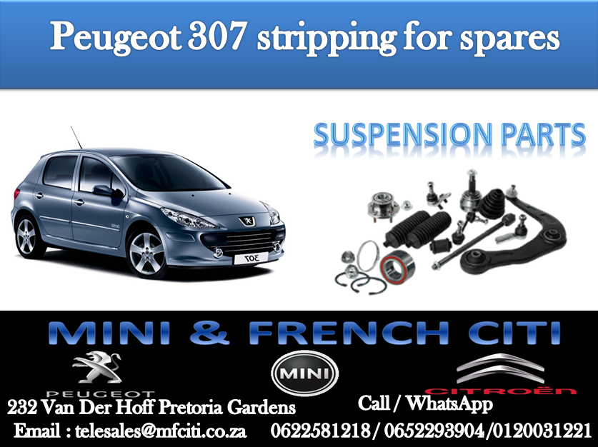 Suspension parts On Big Special for Peugeot 307