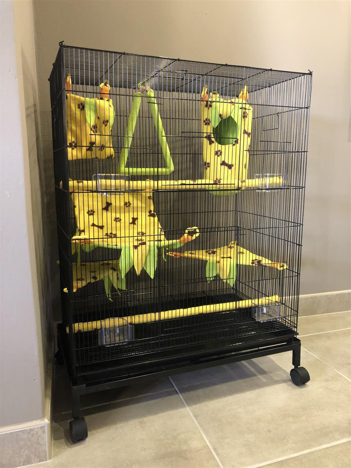 New cage with accessories