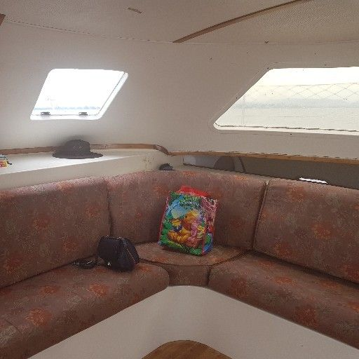 Wildcat catamaran 35ft