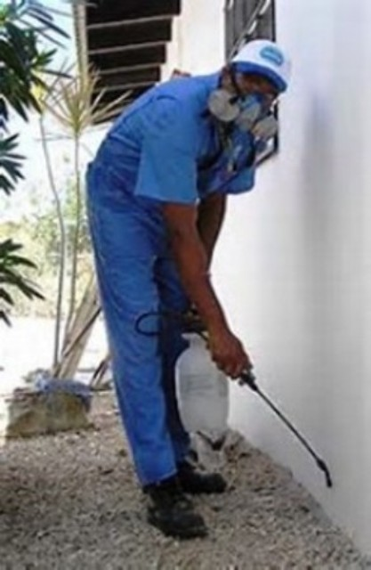 Fumigation And Rodent Control Services