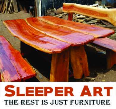Sleeper Art Furniture