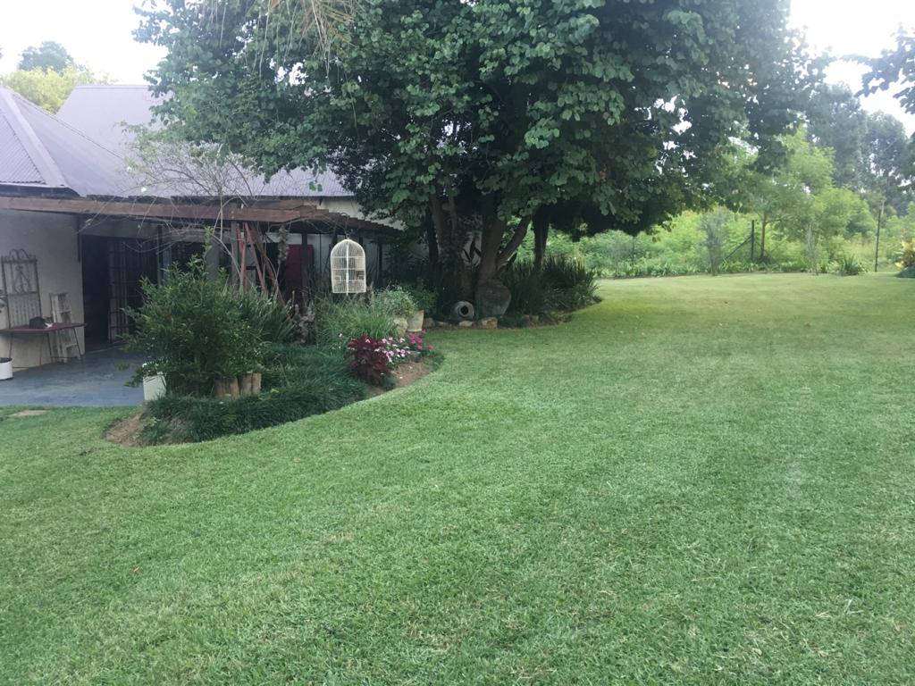 Small Holding For Sale in White River