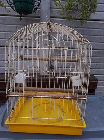 Bird cage Sold as is