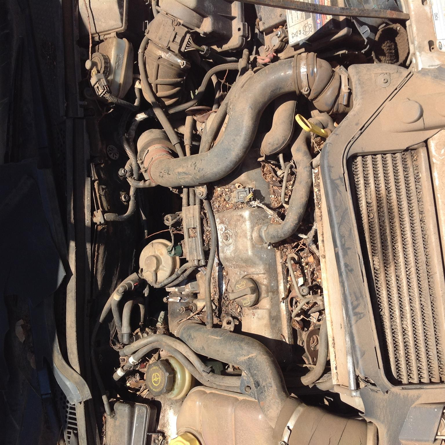 Stripping Ford Focus TDCi 2004 for Spares