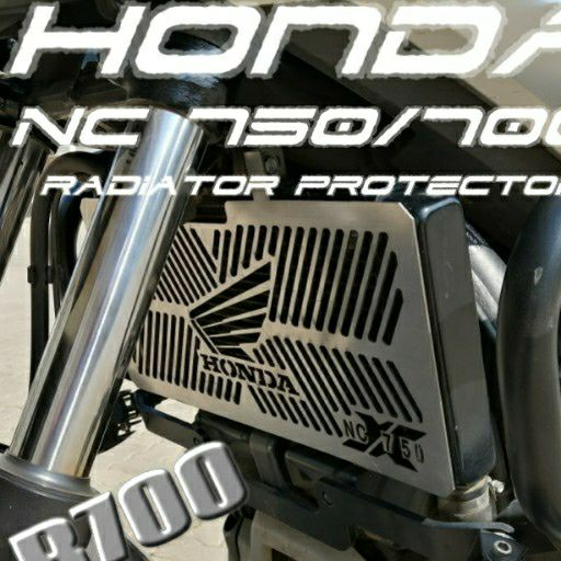 Stainless steel radiator protector