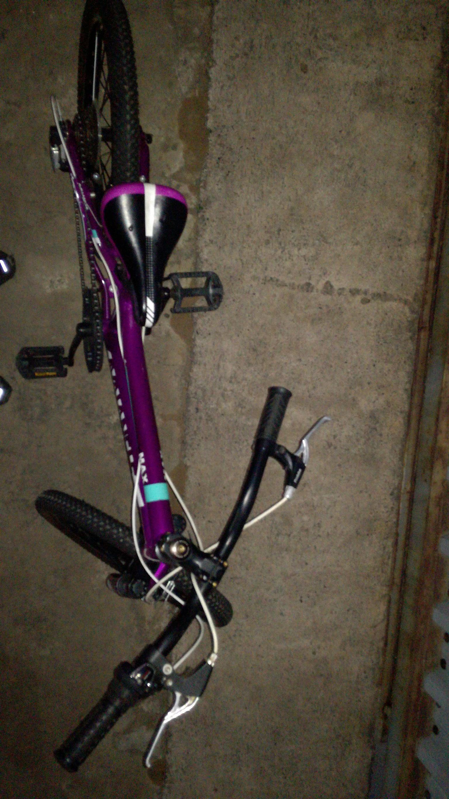Advanlange Girls 20inc bicycle