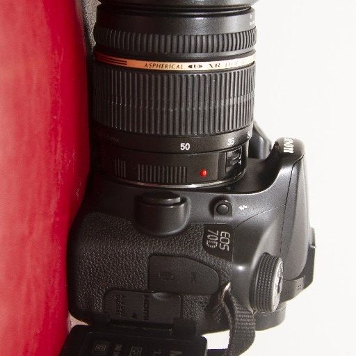 Canon 70D with a very sharp Tamron 17-50mm 1:2.8 lens