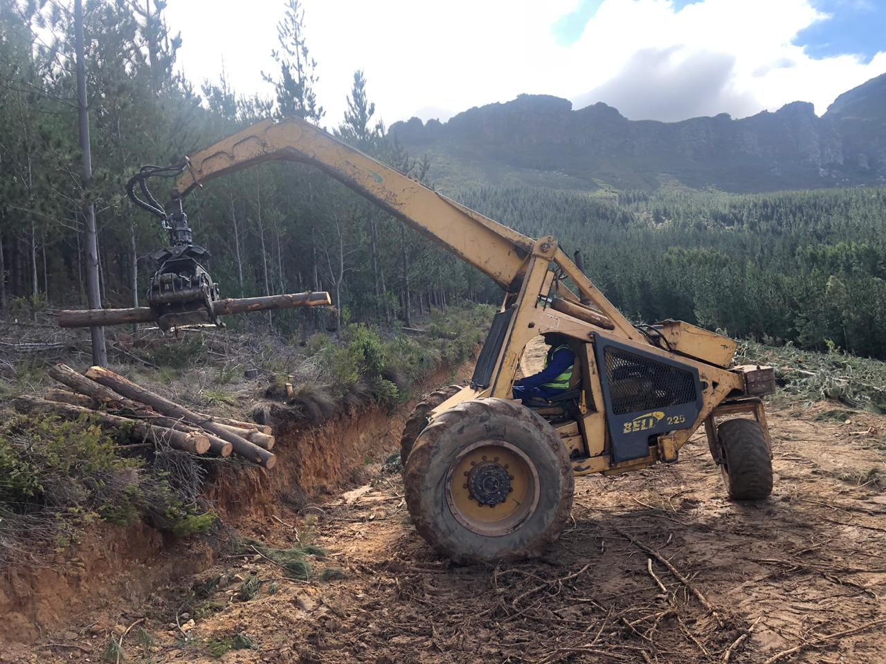 225 Bell Logger Good Used