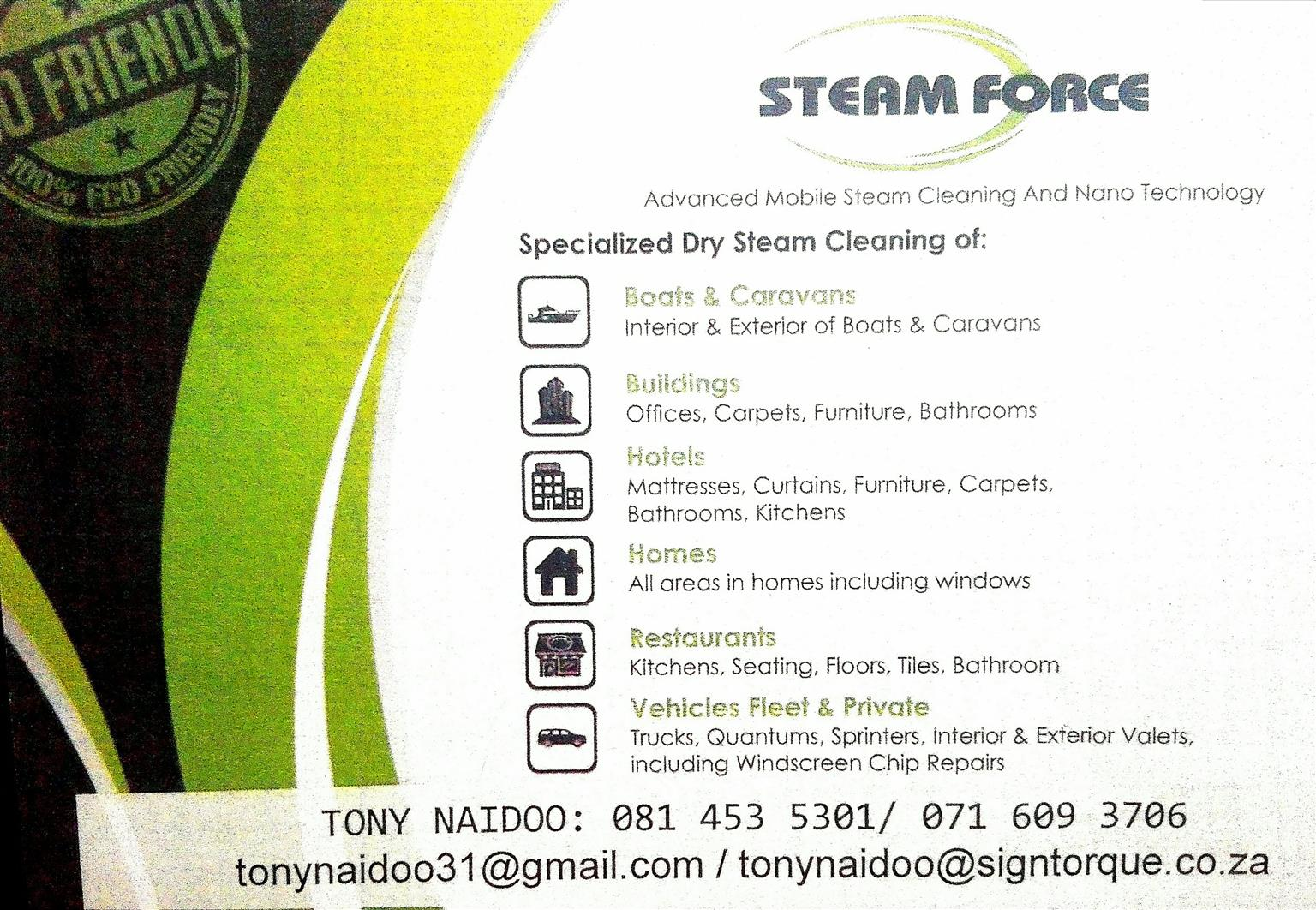 Deep Dry Steam Cleaning Services Sanitizing And