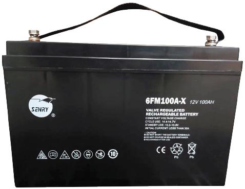 Deep Cycle 12V 100Ah Battery - 6FM100A-X