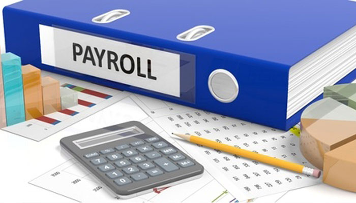 Peopleplus HR and Payroll Franchise Opportunity - Durban