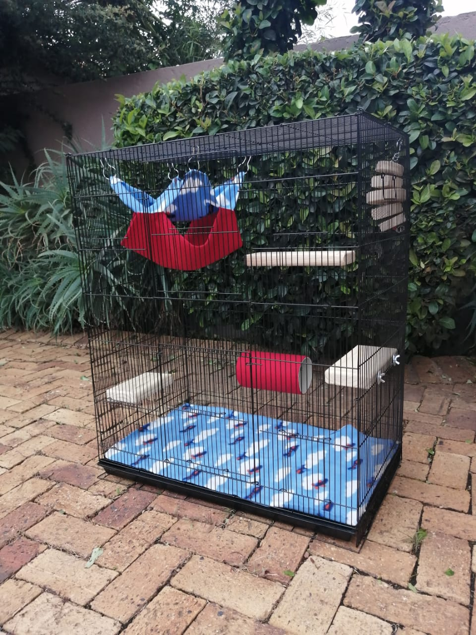 Chinnie and rat cages with accessories