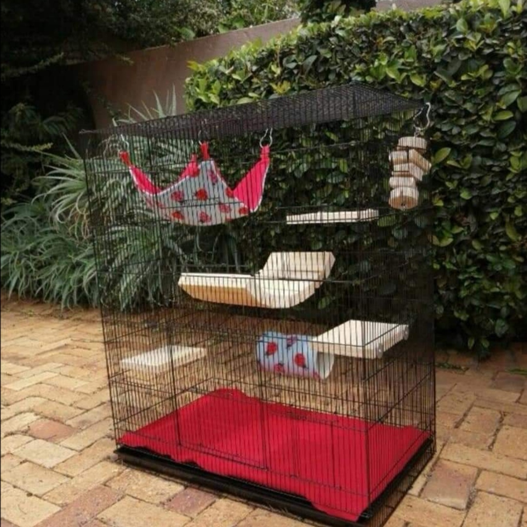 Budget Chinchilla cages