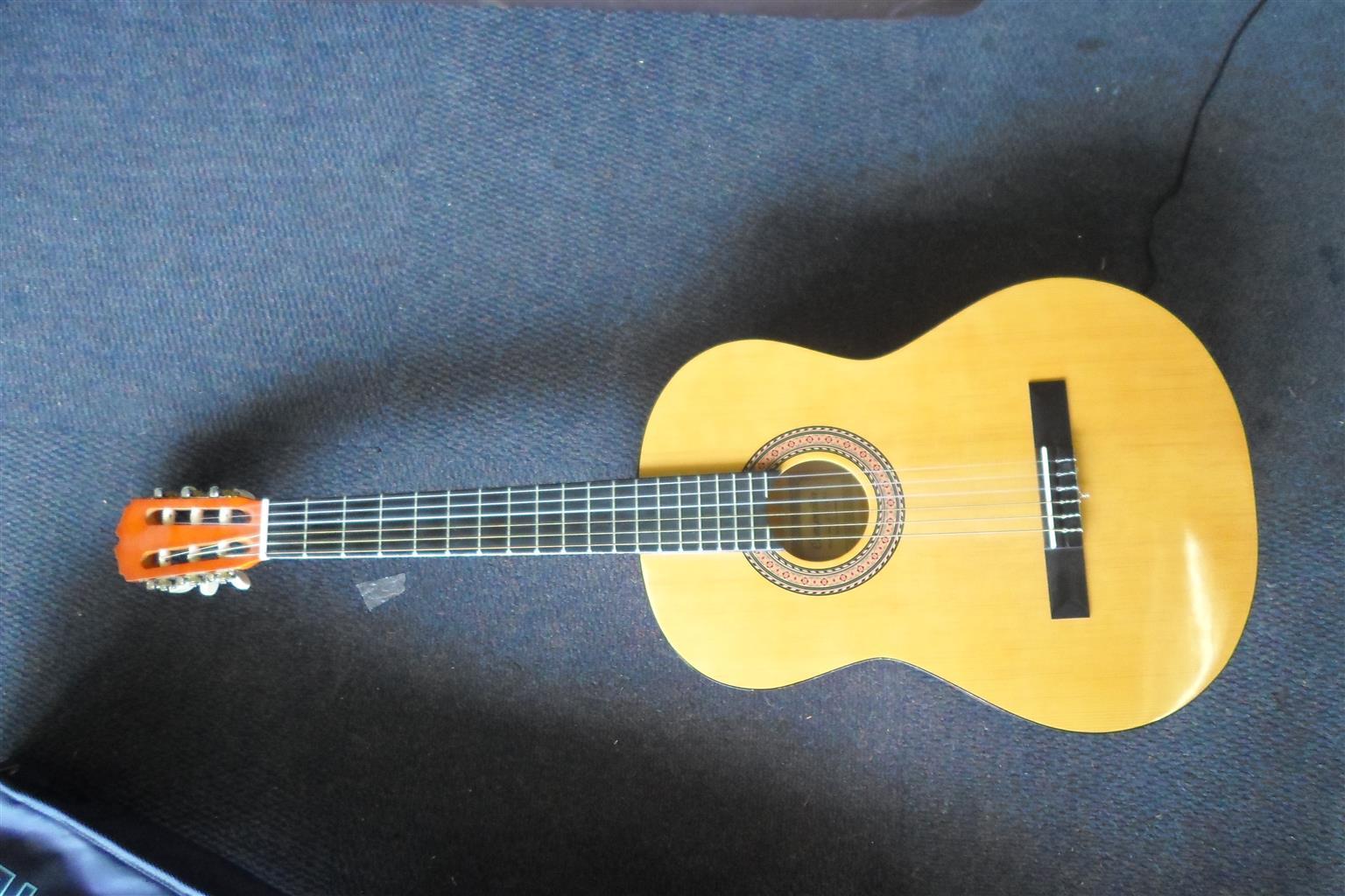 Companion Acoustic Guitar
