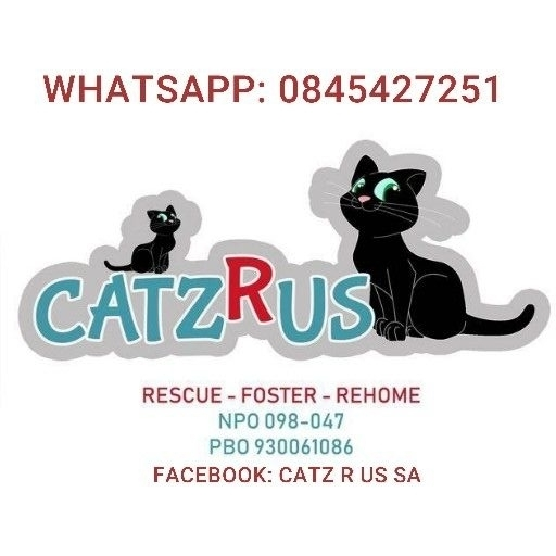 Find CatzRUs's adverts listed on Junk Mail