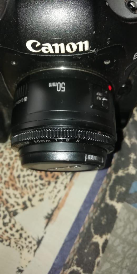 Professional Eos D1 Mark III
