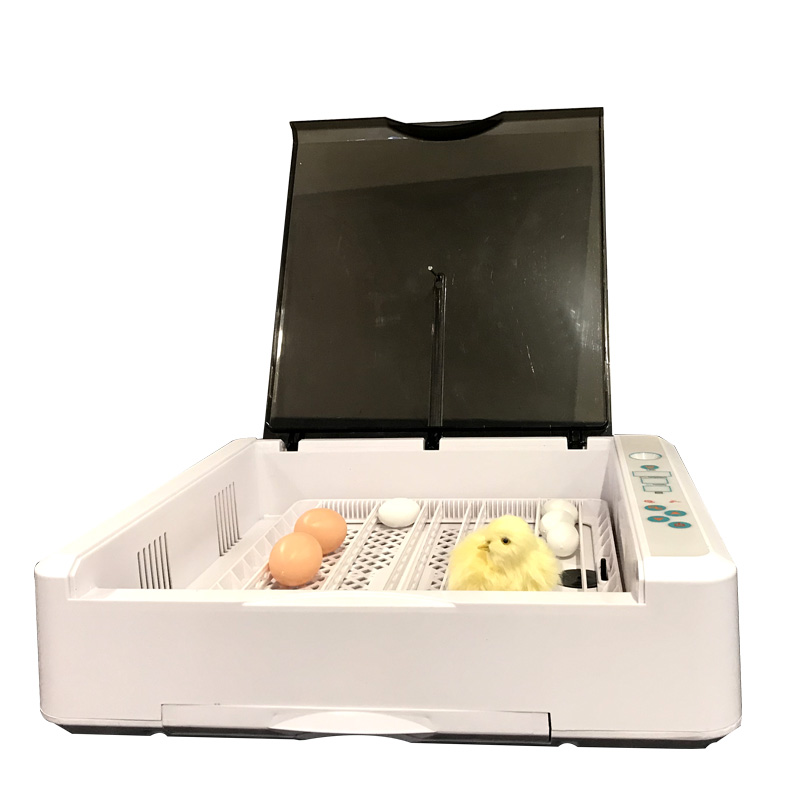Egg incubators for sale - Nationwide Delivery