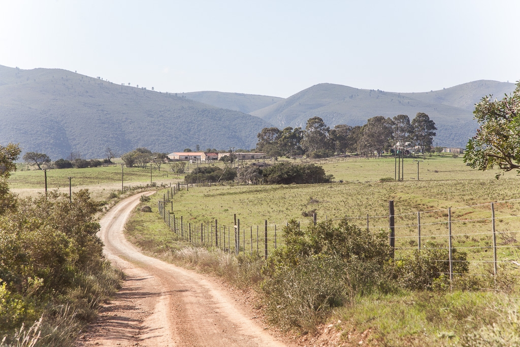 Farm For Sale in Elandsrivier