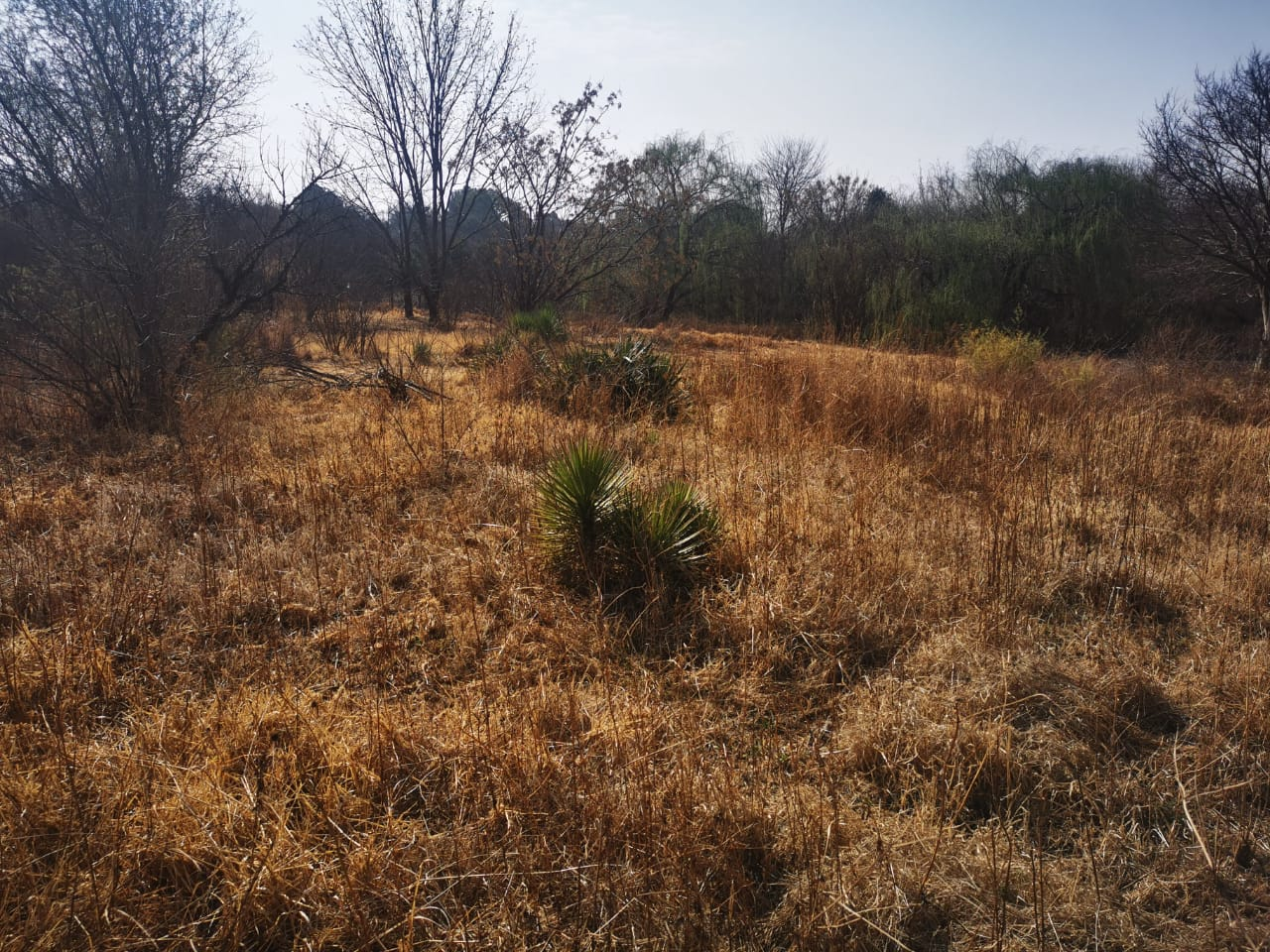 Vacant Land Residential For Sale in Meyerton South
