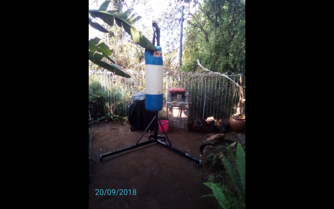 Punching bag and stand for sale