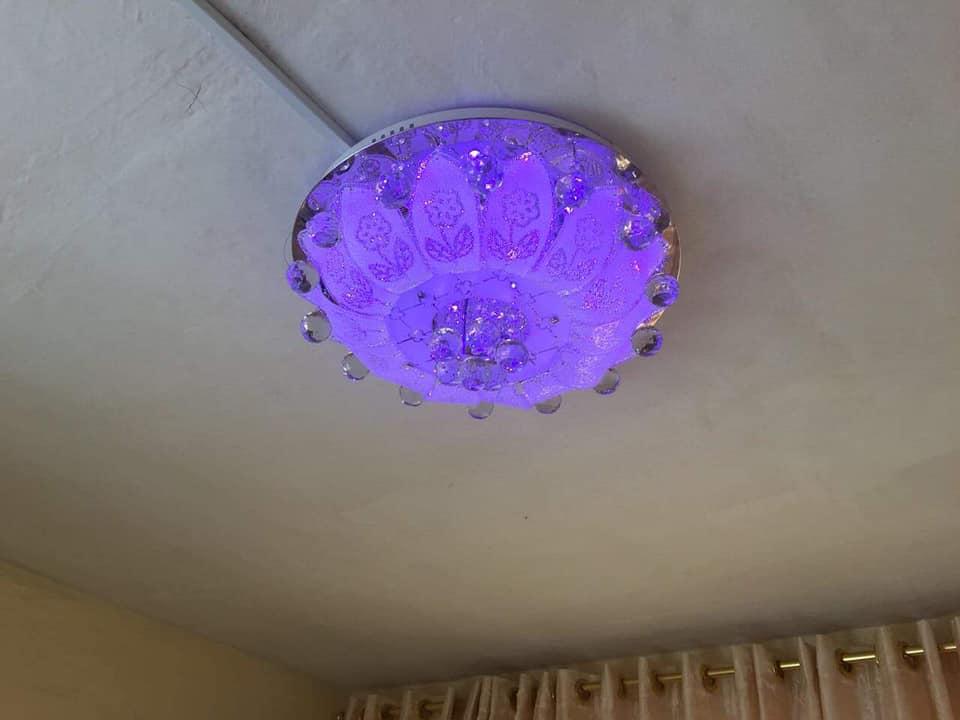 Purple ceiling light for sale