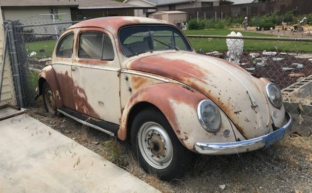 1958 -1961 VW BEETLE WANTED FOR RESTORATION CASH BUYER